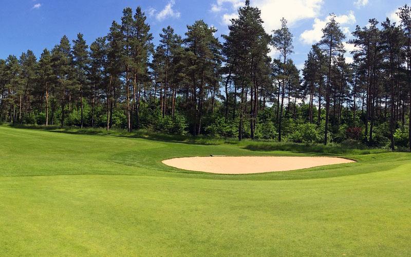Газон на поле для гольфа
